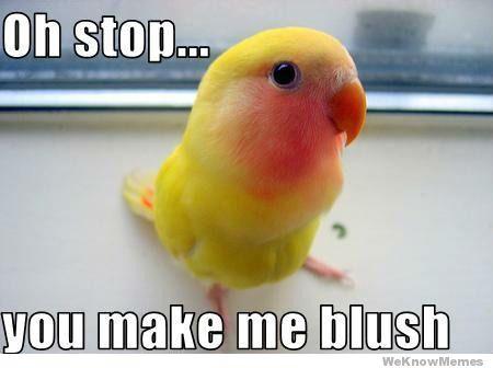 oh-stop-you-make-me-blush