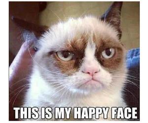 grumpy-cat-300