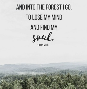 John-Muir-Quotes-And-Sayings-3